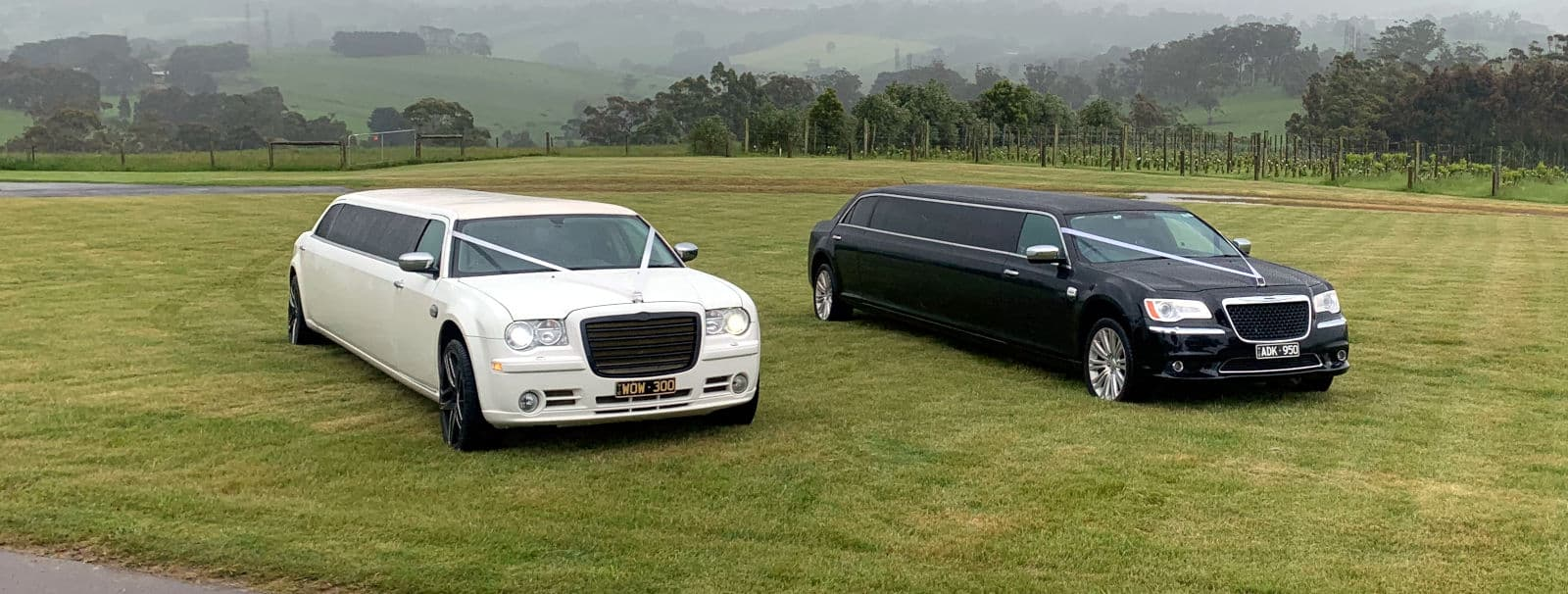 Dual-stretch-wedding-limousines